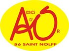 <p>L'association des ajoncs d'or est l'association omnisport de la commune de Saint-Nolff.</p>